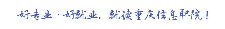 重庆信息技术职业学院招生信息网
